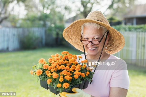 senior woman gardening in back yard, planting flowers - wide brim stock pictures, royalty-free photos & images