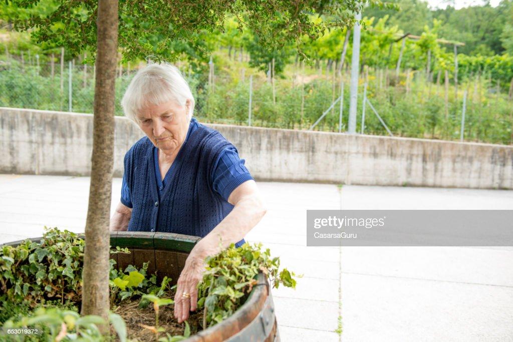 年配の女性が老人ホームでガーデニング : ストックフォト