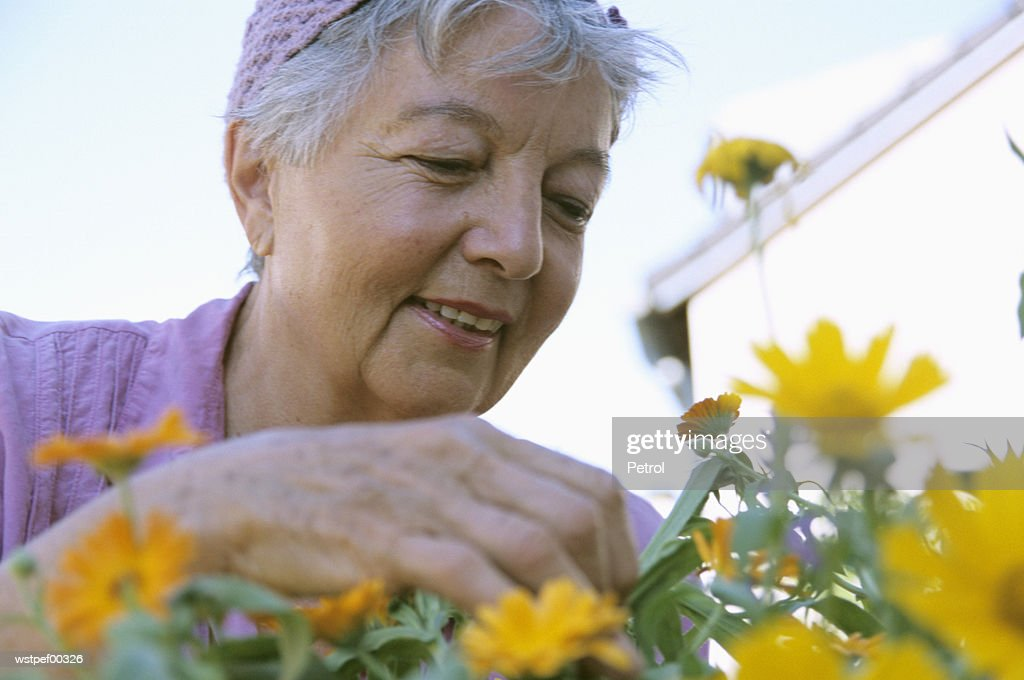 Senior woman gardening, low angle view : Foto de stock