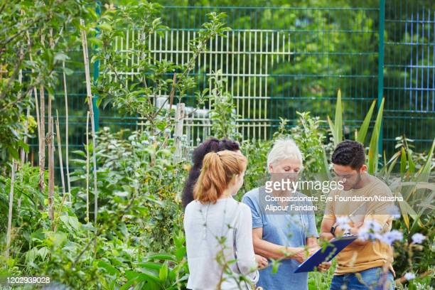 """senior woman giving instructions to young volunteers in community garden - """"compassionate eye"""" stock pictures, royalty-free photos & images"""