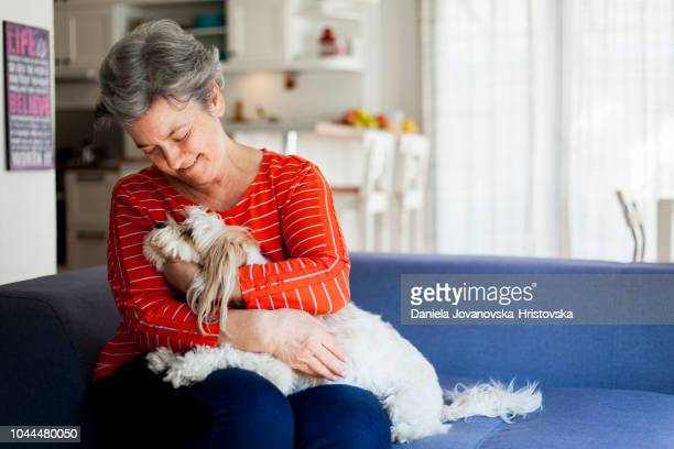 senior woman having fun with her dog - pets stock pictures, royalty-free photos & images