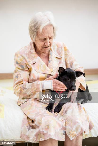 Haute femme ayant zoothérapie dans la maison de retraite