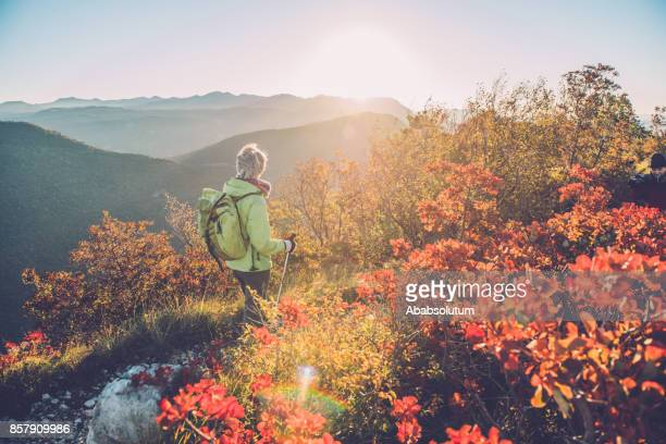 senior woman hiking at autumnal dawn in southern julian alps, europe - bush stock pictures, royalty-free photos & images