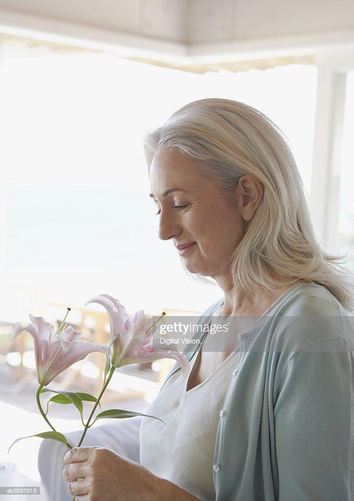Senior Woman Holding a Single Flower : Stock Photo