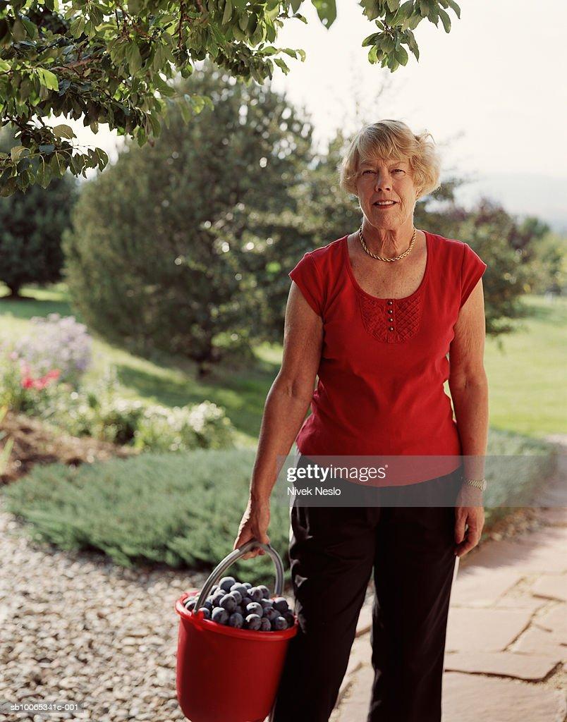 Senior woman holding bucket of plums : Foto stock