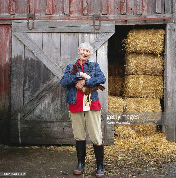 Senior woman holding chicken in front of barn, laughing, portrait