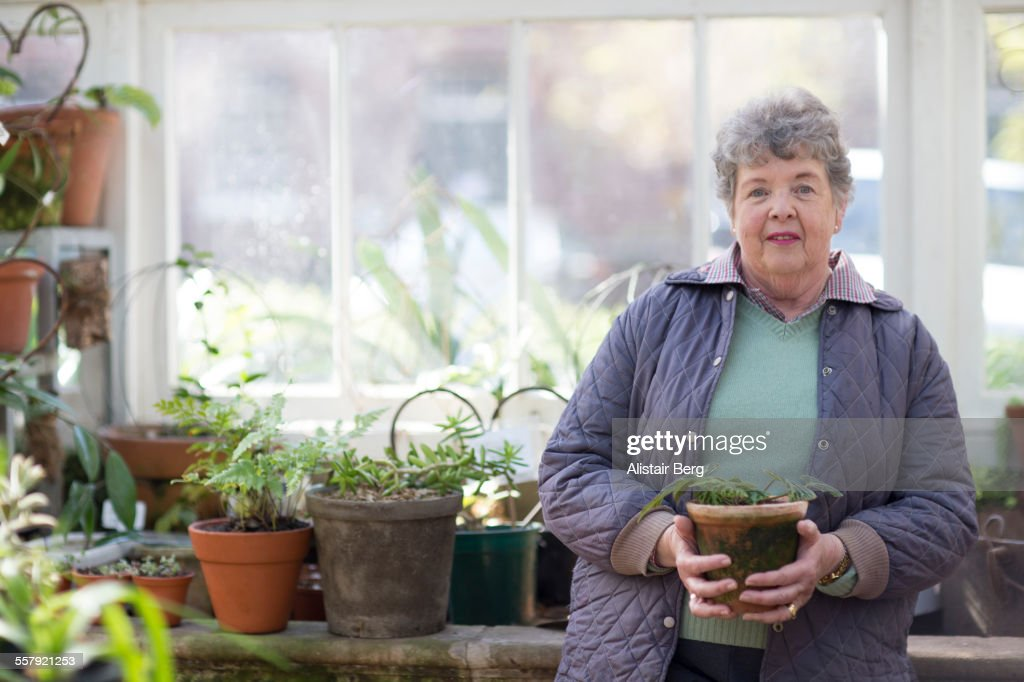 Senior woman in greenhouse : Stock Photo