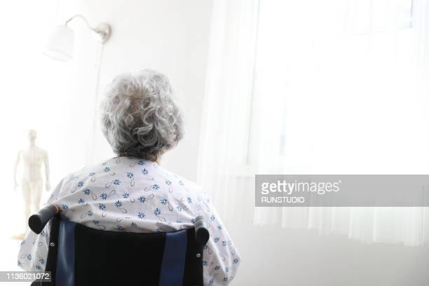 senior woman in wheelchair,rear view - altersheim stock-fotos und bilder