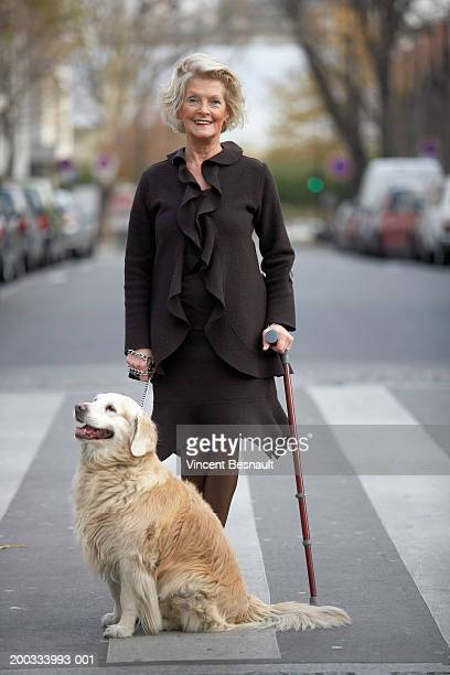 Senior woman on zebra crossing with walking stick and dog, portrait