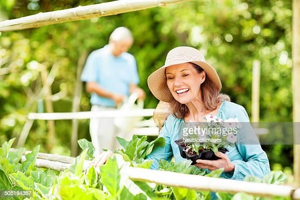 Senior Frau Pflanzen Blumen und Mann gießen In den Garten