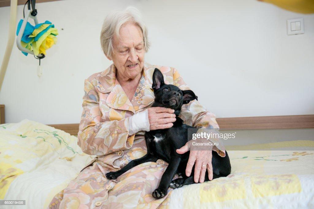 Senior vrouw speelt met haar hond In het bejaardentehuis : Stockfoto