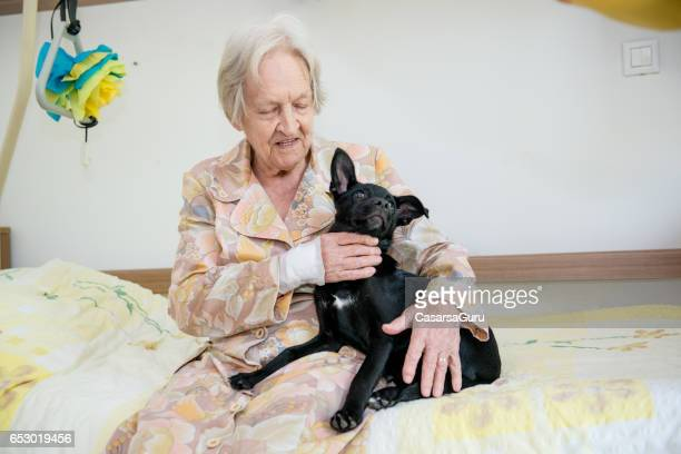 Haute femme jouant avec son chien dans la maison de retraite