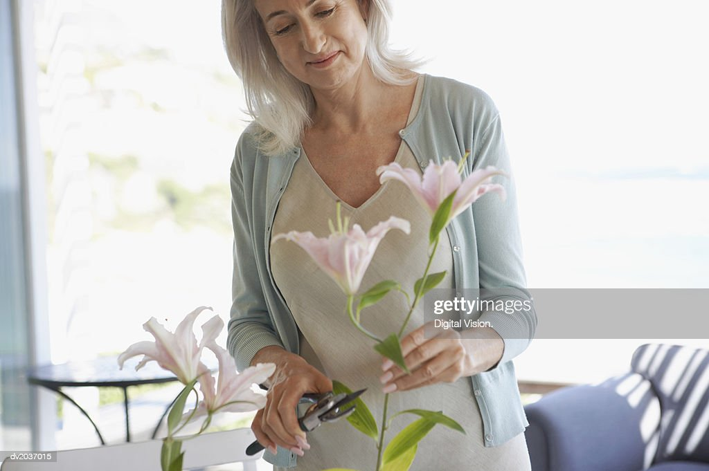 Senior Woman Pruning Cut Flowers : Stock Photo