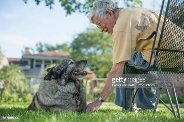 Senior Woman Sitting on Bench in Backyard Leaning Down to Touch her Norwegian Elkhound Dog