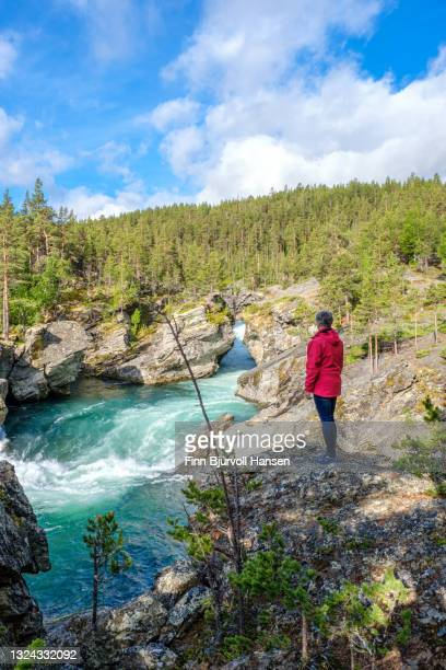 senior woman standing on a rock watching the river a ridderspranget norway - finn bjurvoll stock pictures, royalty-free photos & images