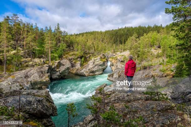 senior woman standing on a rock watching the river a ridderspranget norway - finn bjurvoll stock-fotos und bilder