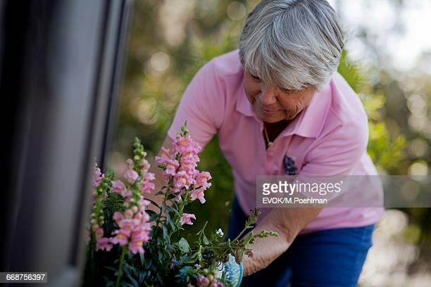 Senior woman taking care of flowers