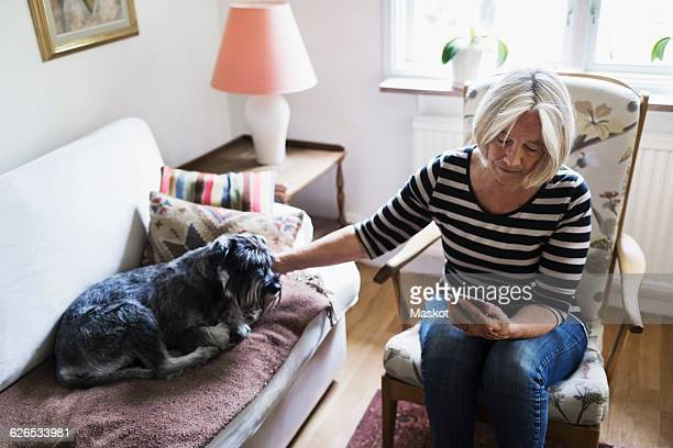 Senior woman using smart phone while stroking dog relaxing on sofa at home