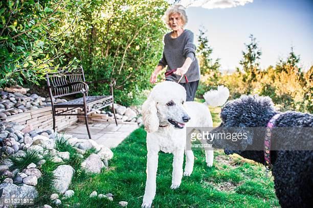 Senior Woman Walking in Dog Park