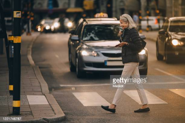 senior woman walking on zebra crossing in city - animated zebra stock pictures, royalty-free photos & images