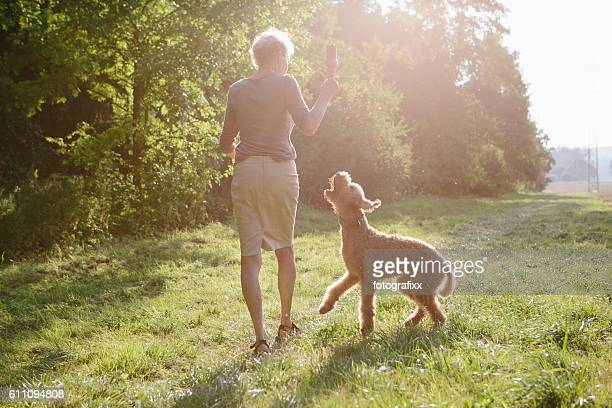 Senior woman walking with her dog between fields and forest