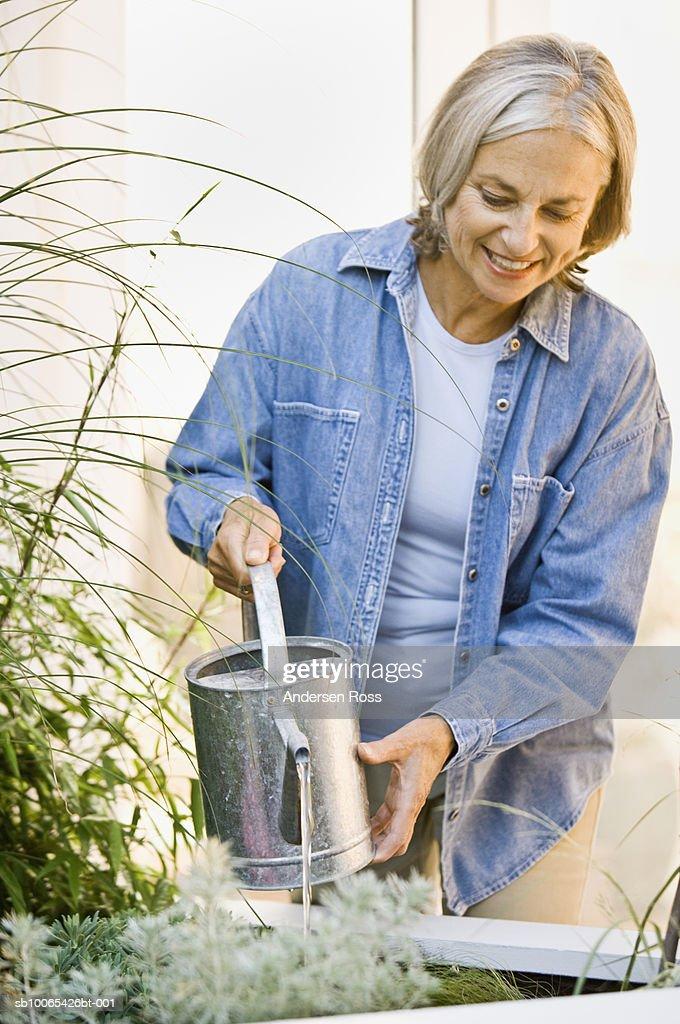 Senior Woman watering House Plants : Foto stock
