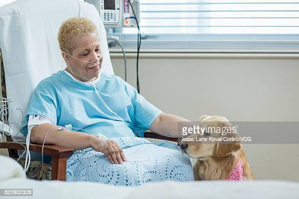 senior woman with dog in hospital - catheter stock photos and pictures