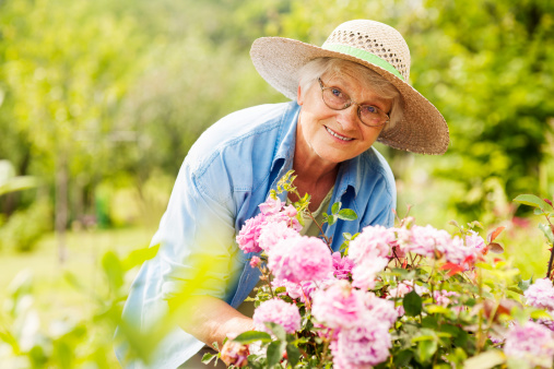 Senior woman with flowers in garden 148278999