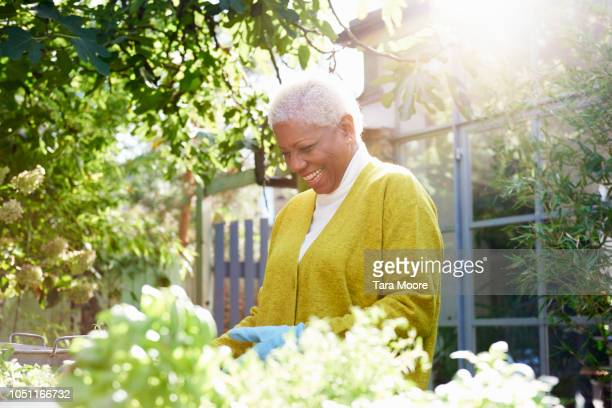 senior woman with pot plants in garden