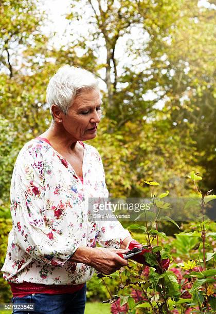 senior woman working in her garden