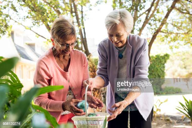 senior women placing easter eggs in a basket - easter basket stock photos and pictures