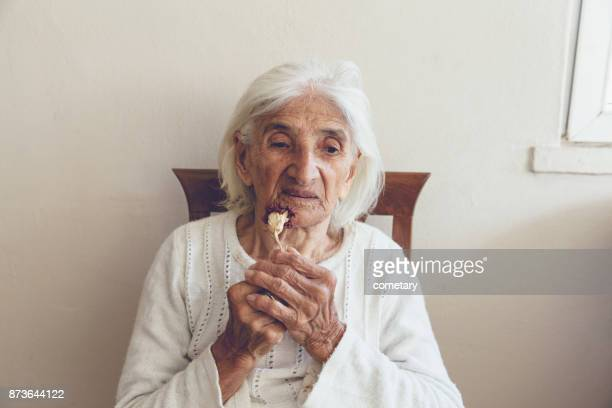 senior women with flower - over 100 stock photos and pictures