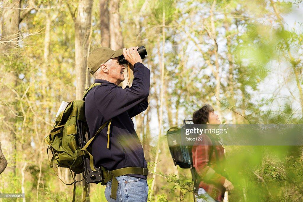 Ancianos: Active senior par al aire libre senderismo en el bosque. La naturaleza. : Foto de stock