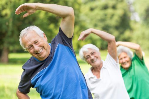 Seniors - gymnastics in the park 504037065