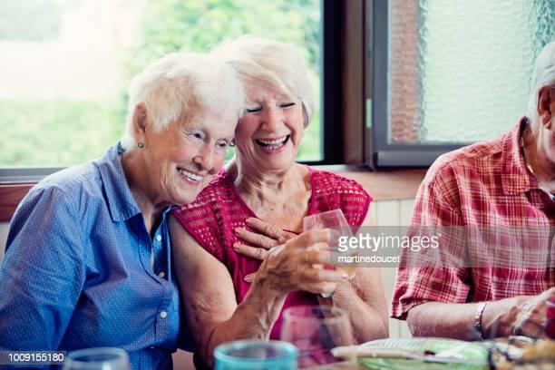 Seniors having dinner and conversation in summer house.