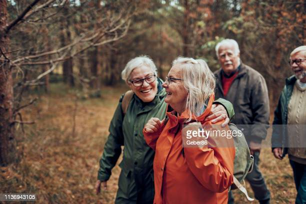seniors hiking through the foerst - northern europe stock pictures, royalty-free photos & images