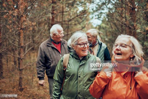 seniors hiking through the foerst - senior adult stock pictures, royalty-free photos & images