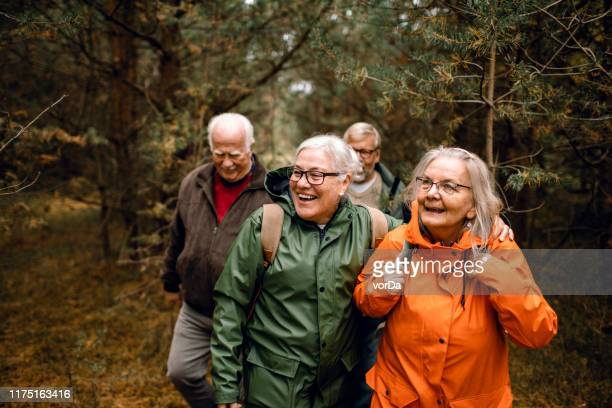 seniors hiking through the foerst - small group of people stock pictures, royalty-free photos & images