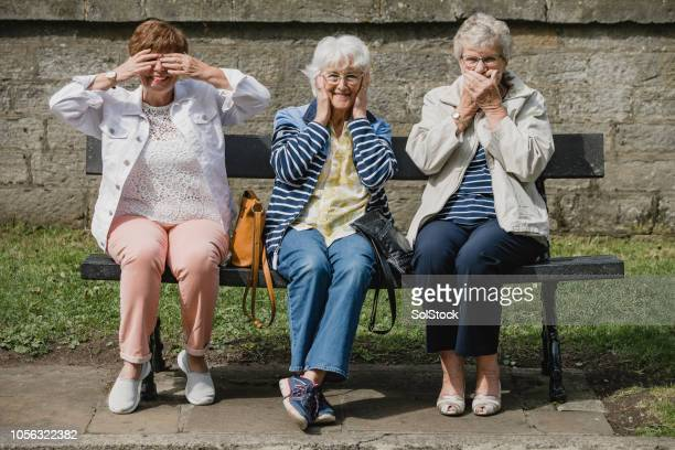 seniors imitating the three wise monkeys - primate stock pictures, royalty-free photos & images
