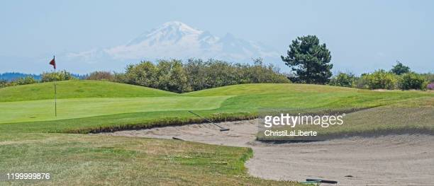 seniors' on the golf course - washington state stock pictures, royalty-free photos & images