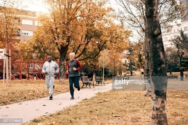 senioren actief in park - alleen seniore mannen stockfoto's en -beelden