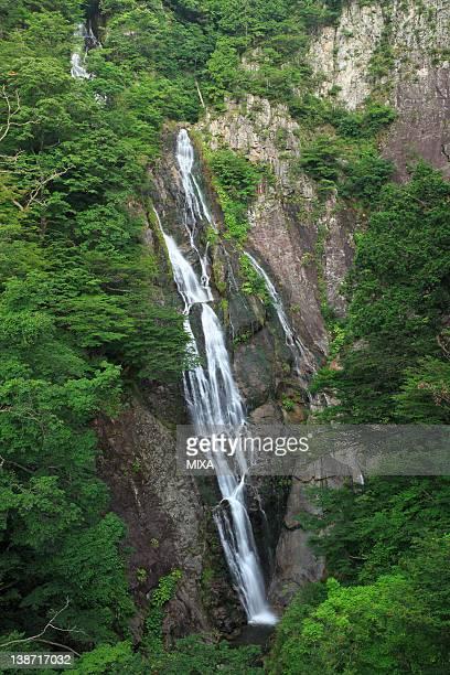 Senjo Waterfall, Tottori, Tottori, Japan
