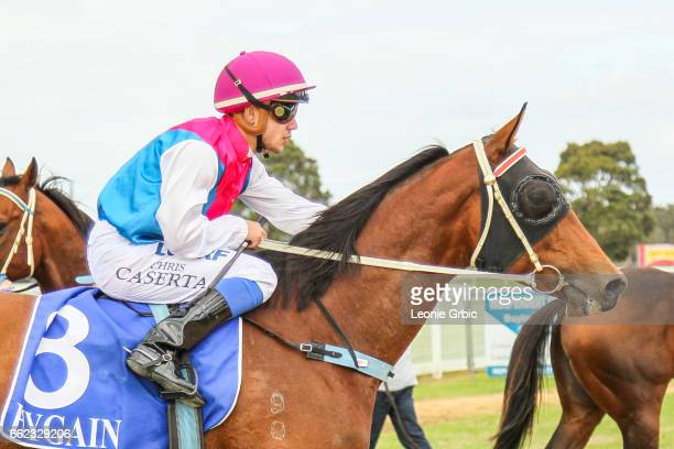 Senorita On Safari ridden by Chris Caserta returns after winning the Classicbet 0 58 Handicap at Bairnsdale Racecourse on April 01 2017 in Bairnsdale...