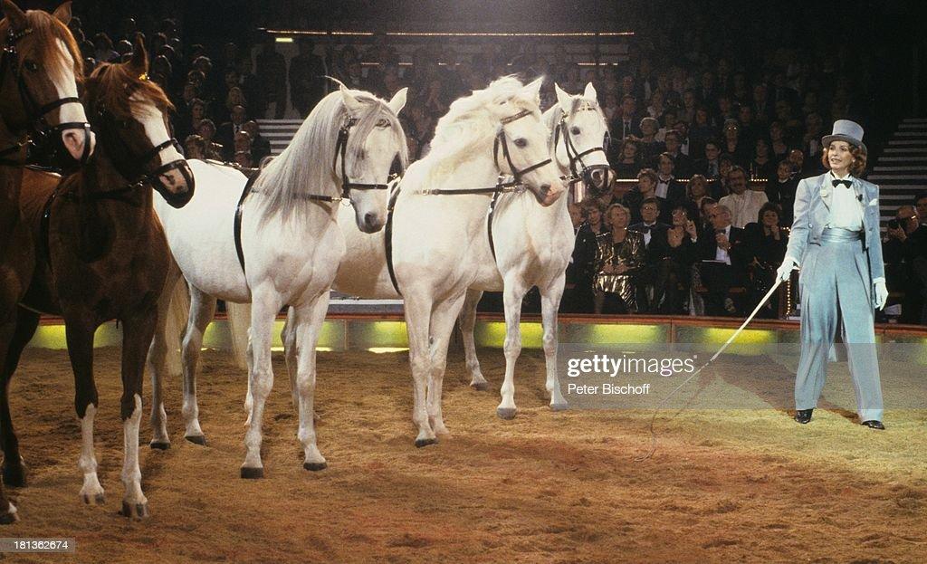 Berger Pferde