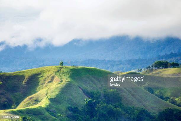 sentani hill - gulf shores alabama stock pictures, royalty-free photos & images