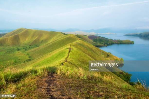 sentani lake - gulf shores alabama stock pictures, royalty-free photos & images