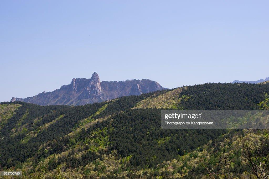 Seoraksan Mountain : Stock Photo