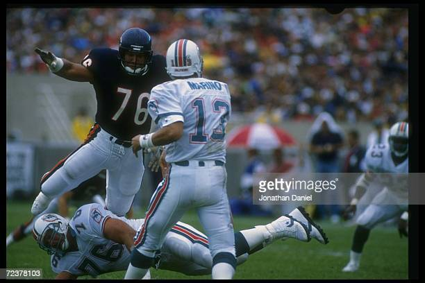Defensive lineman Steve McMichael of the Chicago Bears goes after Miami Dolphins quarterback Dan Marino during a game at Soldier Field in Chicago,...