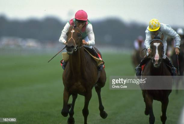Pat Eddery of Ireland on Toulon beats Saddlers Hall to win the St. Leger at Doncaster racecourse in Doncaster, England. \ Mandatory Credit: Chris...