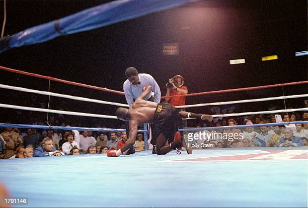 Roger Mayweather and Fidel Avendano in action during a bout Mandatory Credit Holly Stein /Allsport
